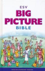 esv-big-picture